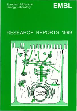 Research Reports (1989)